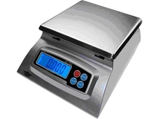 Professional silver diet scale
