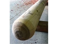 Norwood Cypress Pine Rounds are ideal for childrens playgrounds