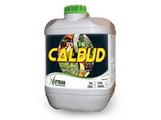 EZYFLOW Calbud