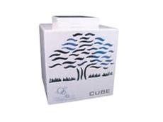 The Oxyzone C80 CUBE ozone generator
