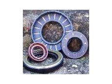 Oz BPHP radial shaft seals