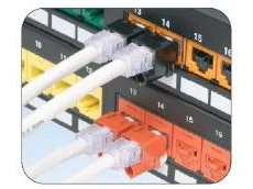 RJ45 Plug Lock-in Device available from PANDUIT