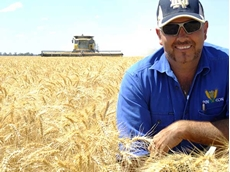 Agronomist condenses six months of wheat crop growth to 28 seconds in image sequence