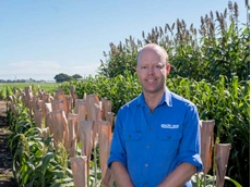 Pacific Seeds forage development lead Wayne Chesher