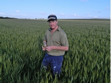 As WA sets harvest records, so too does Beverly grower Adam Smith, with his best performing wheat yielding 3.7t/ha