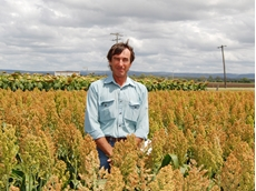 Michael Hegarty is relying on medium-quick sorghums this summer as dry conditions push back planting