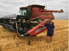 CSIRO study finds value in opening wheat seeding window