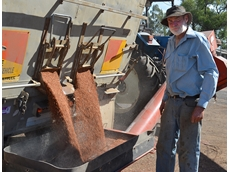 Cambooya grower chases top end yield