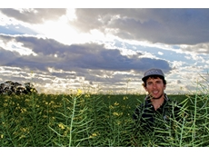 Father and son team see exceptional canola yields: Pacific Seeds