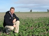 Hyola tops industry blackleg ratings