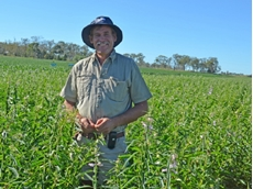 Junabee corn grower capitalises on grit and feed markets