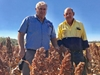 Kingaroy family achieves 25-year milestone as farming trial co-operators
