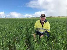 New Havoc wheat jumps from trial to 50% of program at Carnamah
