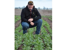 Pacific Seeds canola business manager, Justin Kudnig