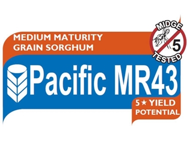 Sustainable growth in difficult dryland environments with Pacidic MR43