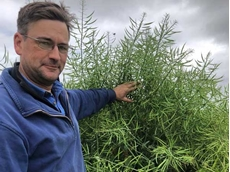 Victorian farmer earns $3600/ha with graze and grain canola