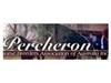 Percheron Horse Breeders Association of Australia Inc