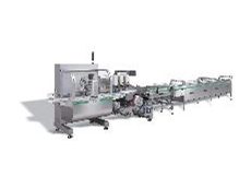 FP 027 box motion horizontal flow-wrapping machine