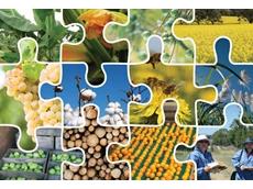 Plant Health Australia (PHA)