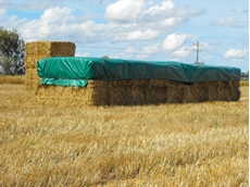 Are you getting the most out of your hay?