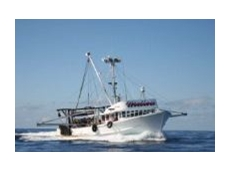 Yanmar Marine offers engines to suit pleasure craft and commercial fishing and workboat applications