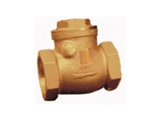 Swing Check Valves, Wafer Check Valves and Strainers