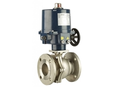316 SS, ANSI 150 Flanged, Electric