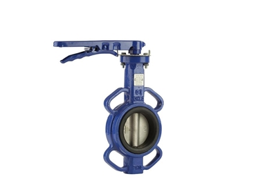 Actuated and manual butterfly valves from Process Systems