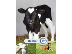 Electrolyte and nutritional supplement for young animals