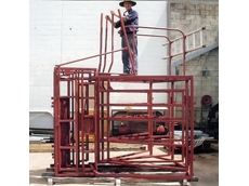 Steel cattle handling equipment