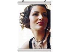 Ceiling mount poster snap frame