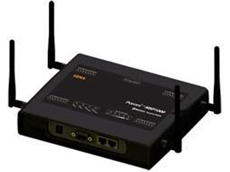 Parani-MSP1000 multi-port Bluetooth access point