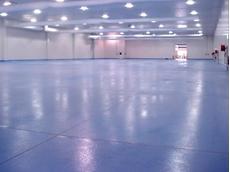 Roxset Polyurethane concrete (PU), Methyl Methacrylate (MMA) & Polyester Flooring