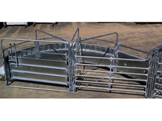 Automatic Cattle Crushes from RPM  Rural Products