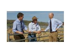 External factors cause Australian rural confidence to fall despite an overall good produce season.