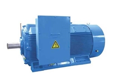 HCM series high voltage and high efficiency three phase asynchronous Marathon motors