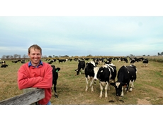 Rivalea Australia provides Tips in Reducing Lameness in Dairy Cattle