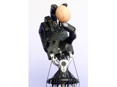 Shadow's dexterous robotic hands feature compliant air muscles, allowing them to be used with soft or fragile objects