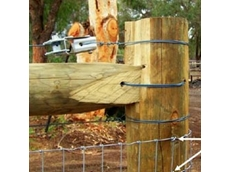 Treated pine post and rail fences