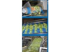Ammeraal Beltech hygienic gauze belts from Rydell Industrial
