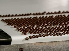 Case Study: Premium food quality conveyor belt aiding chocolatiers
