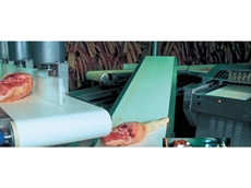 Amseal belt edges prevent bacteria from penetrating the conveyor belt