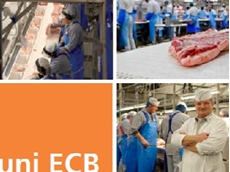 uni ECB (Easy Clean Belt) for the food industry