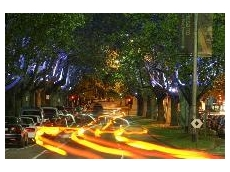 Melbourne's St Kilda Road