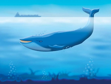 Blue Baleen System
