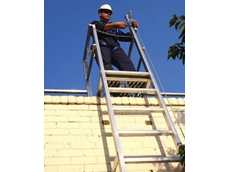 Vertical lifeline system in a ladder application