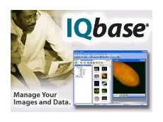 IQbase version 2.5, an image processing asset management solution from Scitech