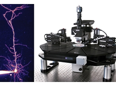 Multiphoton imaging system from Scitech