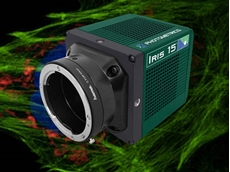 New 15MP sCMOS camera for large field of view imaging