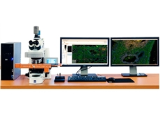 TissueFAXS PLUS upright fluorescence and brightfield microscope system